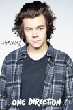 One Direction - Harry 2015 Affiche