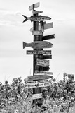 Destination Signs - Florida Photographic Print by Philippe Hugonnard