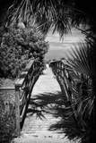 Boardwalk on the Beach - Florida - United States Photographic Print by Philippe Hugonnard