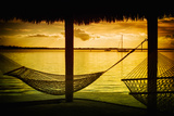 The Hammocks at Sunset - Florida Photographic Print by Philippe Hugonnard