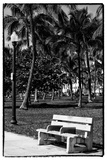 Bench in Miami Beach - Florida Photographic Print by Philippe Hugonnard