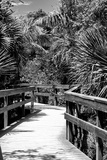 Boardwalk - Florida Photographic Print by Philippe Hugonnard