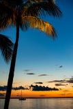 Sunset Landscape - Miami - Florida Photographic Print by Philippe Hugonnard