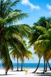 Paradise Beach - Florida - USA Photographic Print by Philippe Hugonnard
