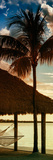 The Hammock and Palm Tree at Sunset - Beach Hut - Florida Photographic Print by Philippe Hugonnard