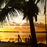 Silhouette at Sunset - Florida Photographic Print by Philippe Hugonnard