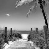 Boardwalk on the Beach - Florida Fotografisk tryk af Philippe Hugonnard