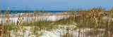 Beach Scene - Florida - United States Photographic Print by Philippe Hugonnard