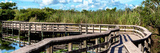 Pier Trail - Everglades National Park - Unesco World Heritage Site - Florida - USA Photographic Print by Philippe Hugonnard