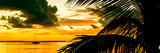 Sunset in Paradise - Florida Photographic Print by Philippe Hugonnard