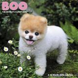 Boo - 2016 Premium Calendar Calendars