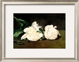 Branch of White Peonies and Secateurs, 1864 Framed Giclee Print by Édouard Manet