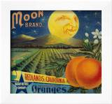 Moon Orange Label - Redlands, CA Posters by  Lantern Press