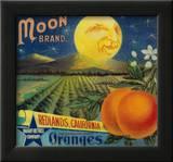 Moon Orange Label - Redlands, CA Prints by  Lantern Press