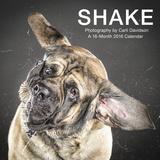 Shake: Dogs - 2016 Calendar Calendars