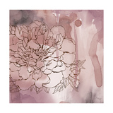 Peony Reverie 1 Premium Giclee Print by Tina Epps