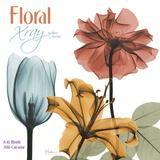 Floral Xray - 2016 Calendar Calendars