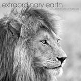 Extraordinary Earth - 2016 Calendar Calendars