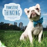 Pawsitive Thinking - 2016 Calendar Calendars