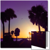Silhouette Palm Trees at Sunset Poster von Philippe Hugonnard
