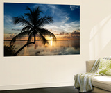 Palm Paradise at Sunset - Florida - USA Wandgemälde von Philippe Hugonnard