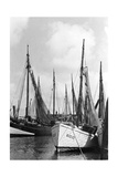 Fishing Boats in Koenigsberg Photographic Print by  Knorr & Hirth