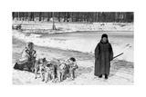 Hundeschlitten in Sankt Petersburg, 1910erJahre Photographic Print by Scherl Süddeutsche Zeitung Photo