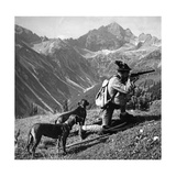 Jäger mit zwei Hunden, um 1935 Fotografisk trykk av  Knorr & Hirth