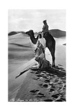 Gebet in der Wüste, 1935 Fotografie-Druck von Scherl Süddeutsche Zeitung Photo