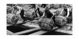Hafenarbeiter in Tokio, 1930er Jahre Photographic Print by  Knorr & Hirth