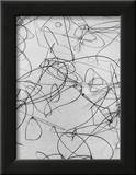 Reeds in Sand Framed Photographic Print by Brett Weston