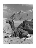 Prayer in Front of the Pyramids of Giza, 1942 Photographic Print by  Scherl