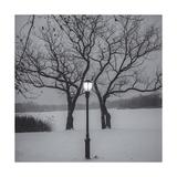 Prospect Park Lamp Post in Snow Papier Photo par Henri Silberman