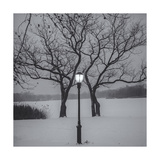 Prospect Park Lamp Post in Snow Fotografisk tryk af Henri Silberman
