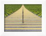 Stadium stairway between rows of green seats Framed Photographic Print by Michael Kai