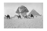 Pyramids and Sphinx of Giza, Ca. 1900's Photographic Print by  Scherl