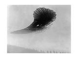 Flugapparat von Franz Wels, 1907 Photographic Print by  Scherl