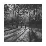 Central Park Path in Fall Photographic Print by Henri Silberman