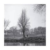 Tree in Winter with Pond Photographic Print by Henri Silberman