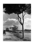 Countryside Near Grudziadz, 1942 Photographic Print by  Scherl