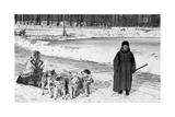Dog Sledge in Saint Petersburg, 1910S Photographic Print by  Scherl
