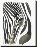 Zebra Eye Stretched Canvas Print by Jessica Durrant