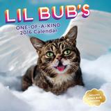 Lil Bub - 2016 Calendar Calendars