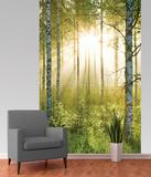 Forest Deco Wallpaper Mural - Duvar Resimleri
