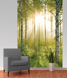 Forest Deco Wallpaper Mural Bildtapet (tapet)