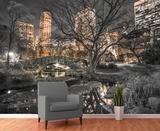 Central Park Scene Wallpaper Mural Veggoverføringsbilde