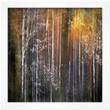 Nothing Gold Can Stay Framed Photographic Print by Ursula Abresch