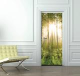 Forest Door Wallpaper Mural - Duvar Resimleri