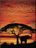 African Sunset Mounted Print