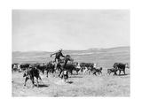 Cowboy in den USA, 1928 Photographic Print by  Süddeutsche Zeitung Photo